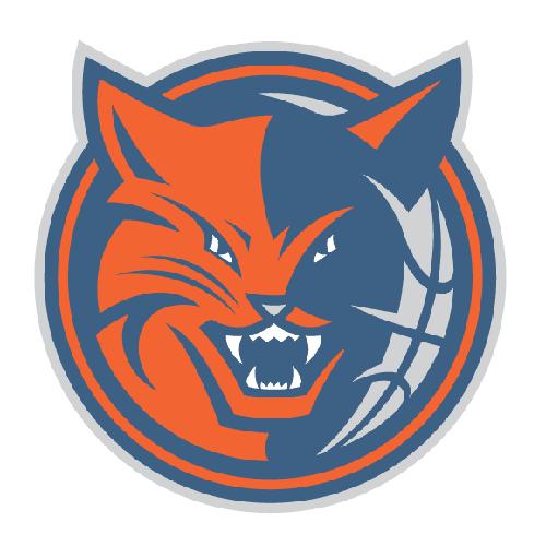 logo charlotte bobcats