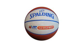 pallone spalding precision