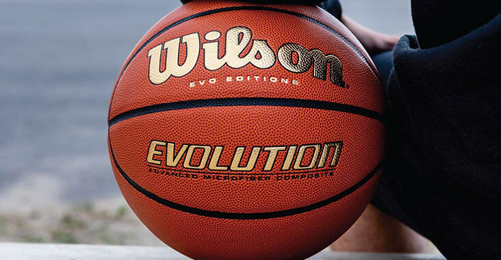 wilson evo editions gold pallone